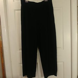 Eileen Fisher Woman Black Stretch Pants 1X